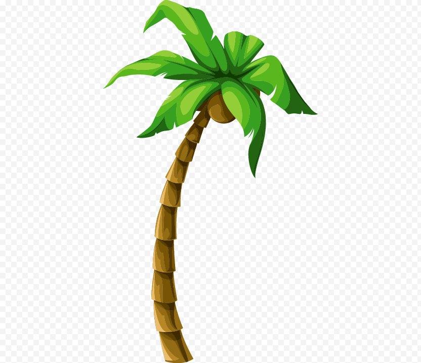 Coconut Tree Euclidean Vector Beach PNG
