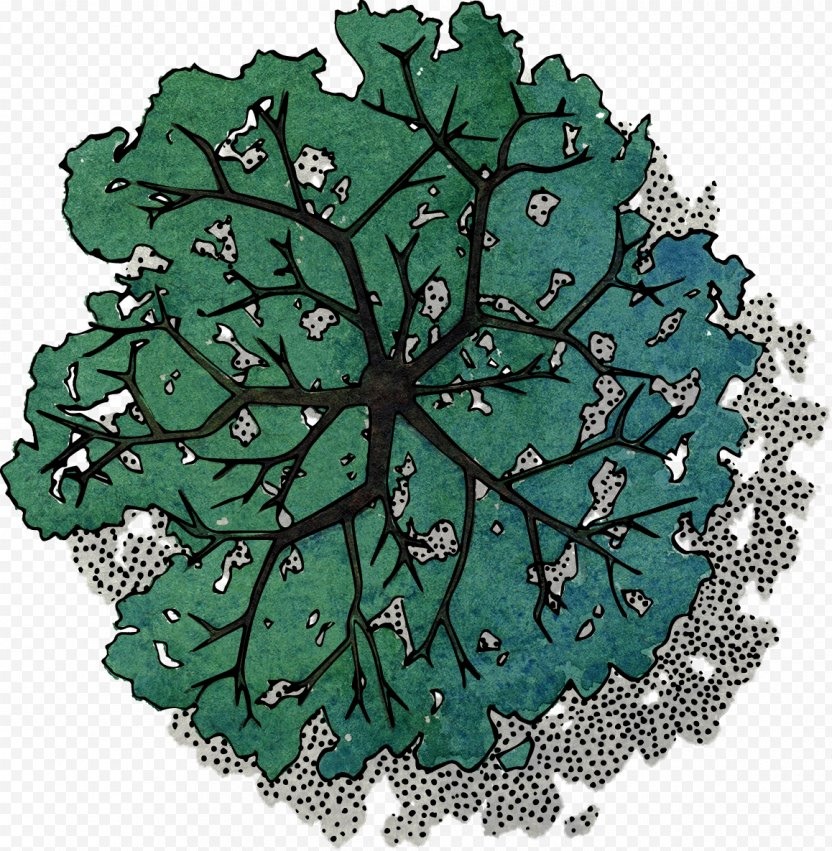 Green Tree Top View - Dots Per Inch PNG