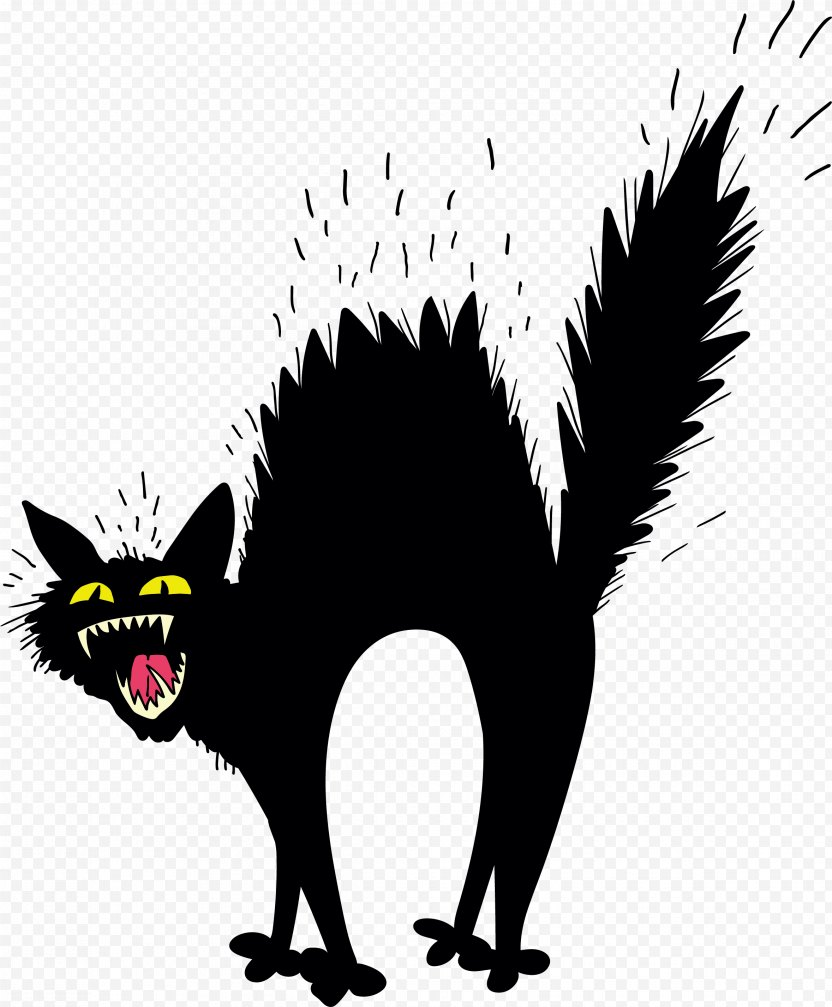 Scary Black Cat - Like Mammal PNG