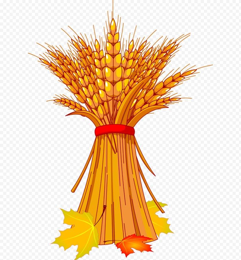 Harvest Festival Autumn Clip Art PNG