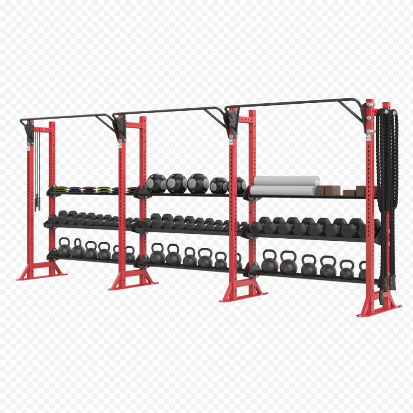 Fitness Centre Strength Training Exercise Physical PNG