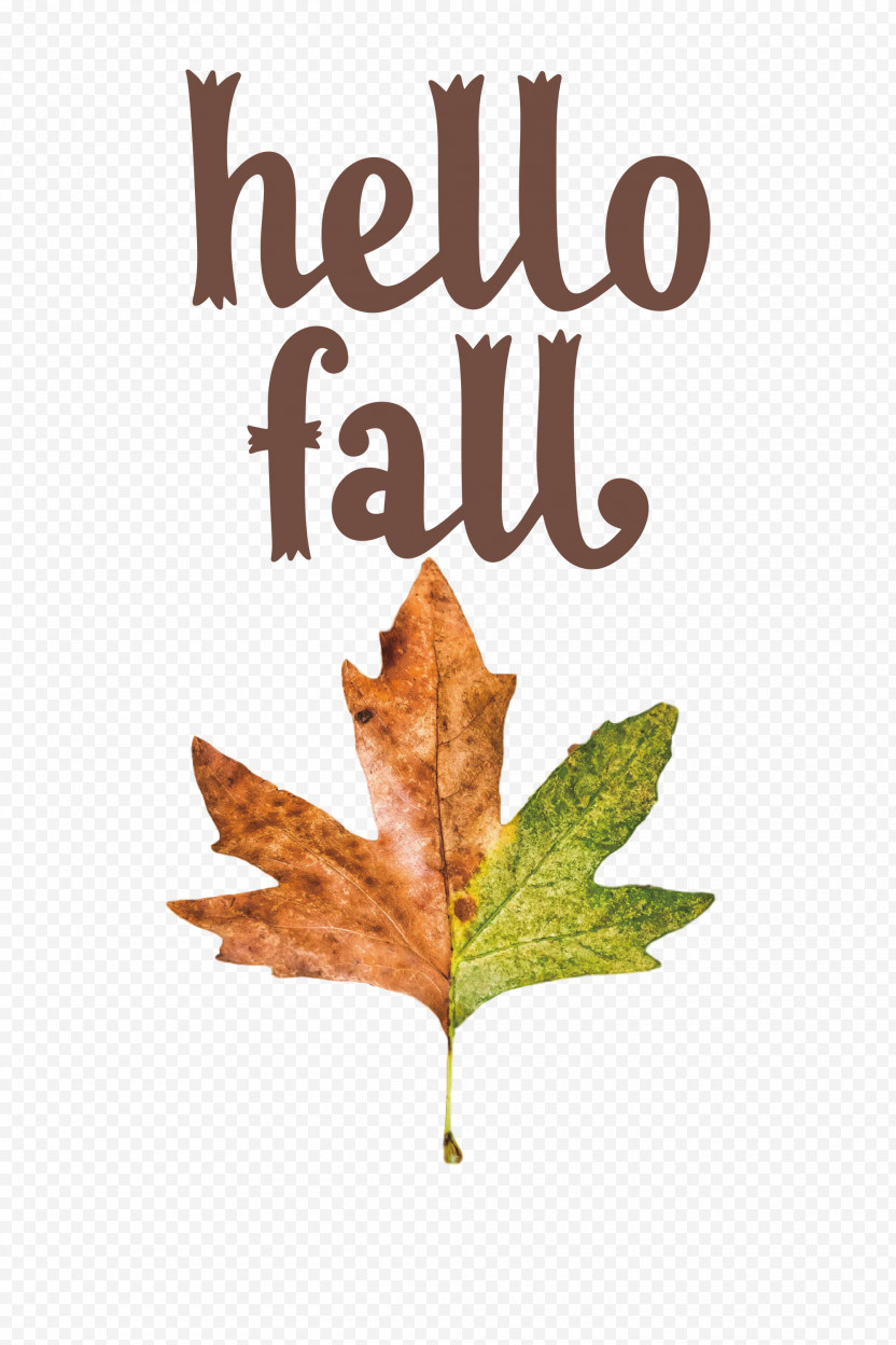 Hello Fall Fall Autumn PNG