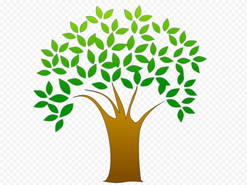 Tree Oak Clip Art - Bing Images PNG