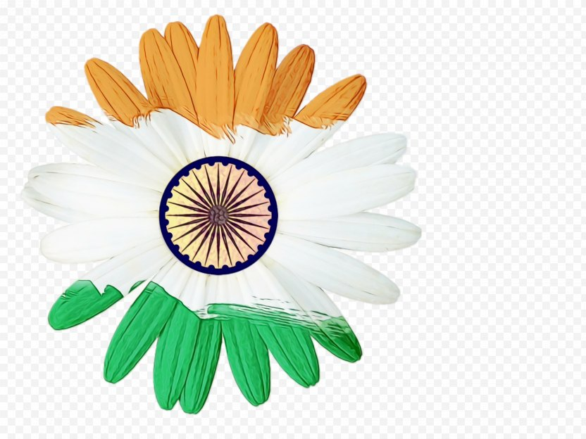 India Independence Day Flower Background PNG