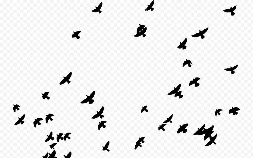 Sticker PicsArt Photo Studio Editing - Animal Migration PNG