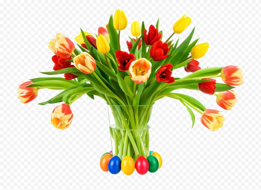 Tulip Stock Photography Flower Color White - Vase PNG