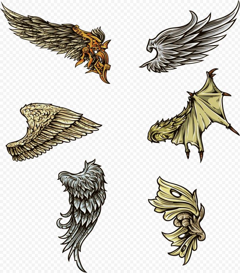 Wing Clip Art - Bird PNG