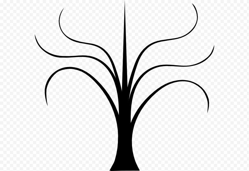 Twig Clip Art Plant Stem Flower Leaf - Botany PNG